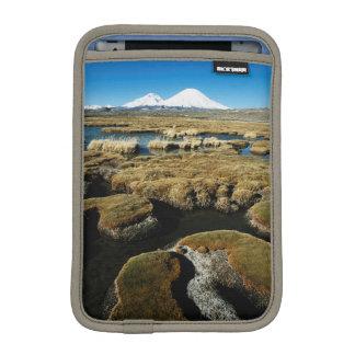 Payachalas Volcanos iPad Mini Sleeve