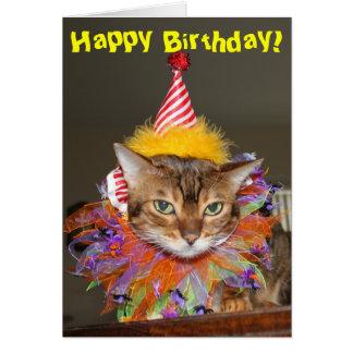 Payaso del gatito del cumpleaños felicitacion
