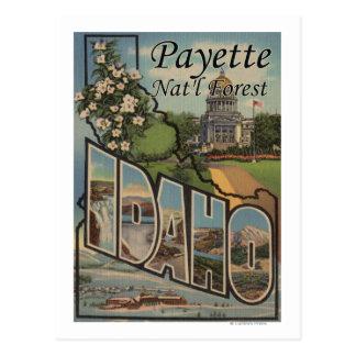 Payette Nat l Forest Idaho - Large Letter Scene Postcard