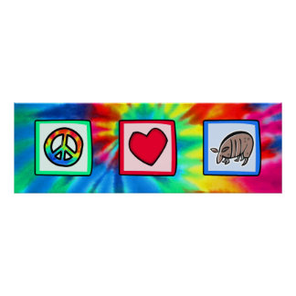 Paz, amor, armadillos póster