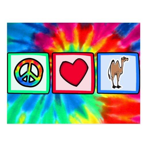 Paz, amor, camellos postal