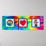 Paz, amor, música country poster