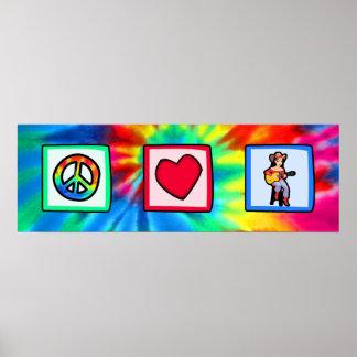 Paz, amor, música country póster
