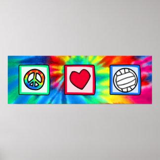 Paz, amor, voleibol póster