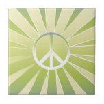 Paz Azulejo Ceramica