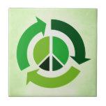 Paz de Eco Tejas
