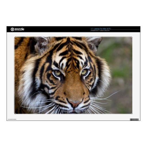 Paz de la confianza del poder y tigre tranquilo de calcomanía para 43,2cm portátil