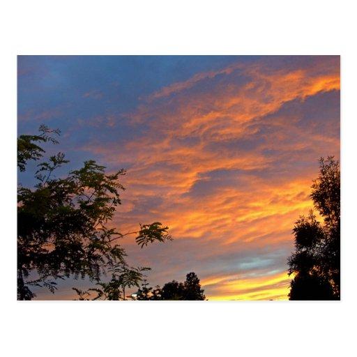 Paz de la puesta del sol postales