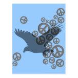 paz del águila postal