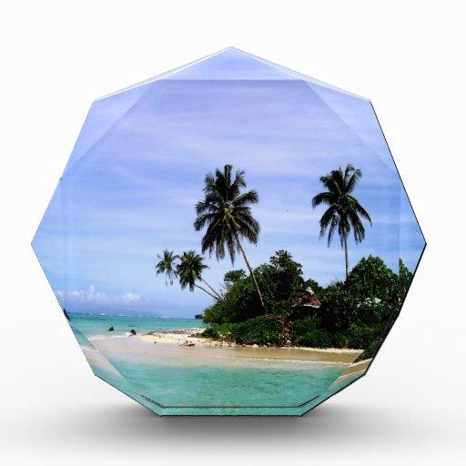 paz del mar de las palmeras