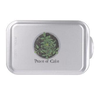Paz del molde para pasteles de la planta de tomate