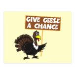 Paz divertida de la parodia de Turquía Postal