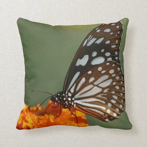 paz dulce de la belleza y mariposa azul tranquila  cojines