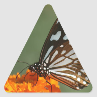 paz dulce de la belleza y mariposa azul tranquila calcomanía triangulo personalizadas