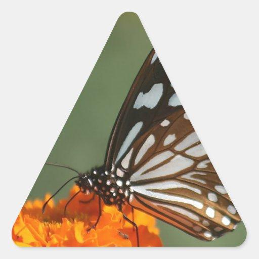 paz dulce de la belleza y mariposa azul tranquila  calcomania trianguloada