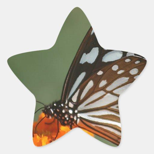 paz dulce de la belleza y mariposa azul tranquila pegatina en forma de estrella