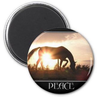 Paz en el imán de la puesta del sol