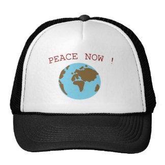 Paz en el mundo gorras de camionero