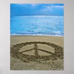 paz en el océano posters