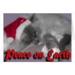 Paz en la tierra tarjetas