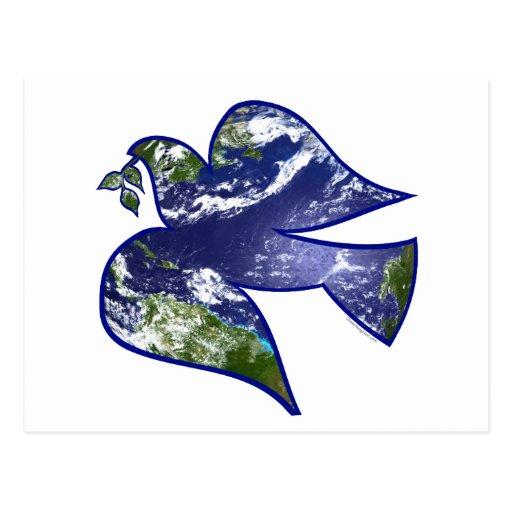 Paz en paloma de la tierra tarjetas postales