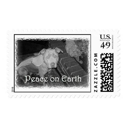 Paz en sello del pitbull de la tierra
