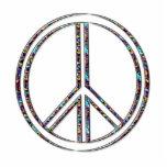 Paz Esculturas Fotográficas