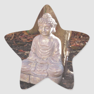 Paz espiritual budista del ídolo de la estatua de pegatina en forma de estrella