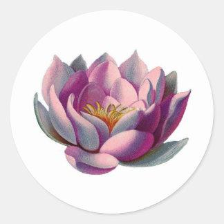 Paz l flor de Lotus lirio de agua rosados hermosos Etiquetas Redondas
