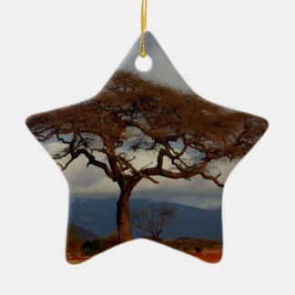 Paz nupcial del personalizado de la ducha de adorno de cerámica en forma de estrella