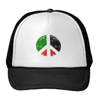 Paz Palestina Gorras