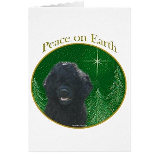 Paz portuguesa del perro de agua tarjetas