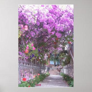 Paz púrpura impresiones