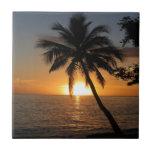 Paz y alegría de Fiji de la palmera del coco de la Tejas