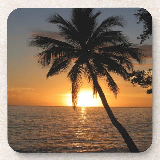 Paz y alegría de Fiji de la palmera del coco de la Posavasos