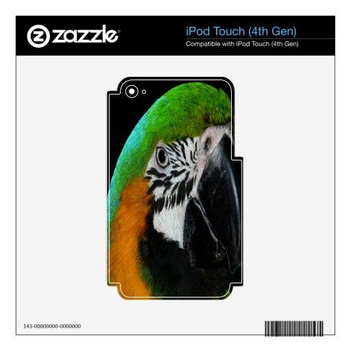 paz y alegría del amor del loro que esperan para iPod touch 4G skins
