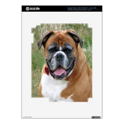 paz y alegría del amor del perro del boxeador pegatinas skins para iPad 3