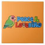 Paz y Lovebird Tejas