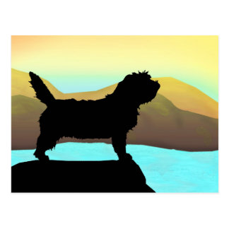 PBGV Dog By The Sea Postcard