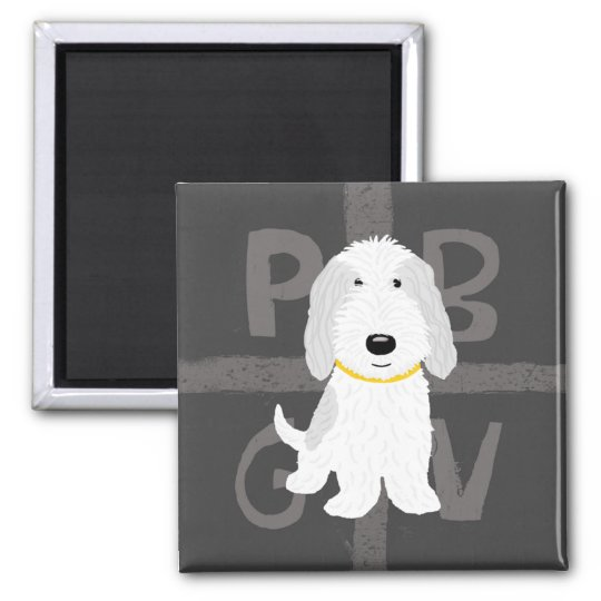 PBGV gris y blanco Imán Cuadrado
