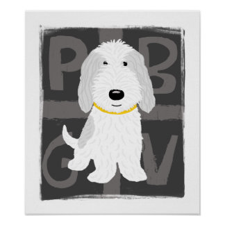 PBGV gris y blanco Poster
