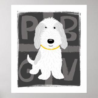 PBGV gris y blanco Póster