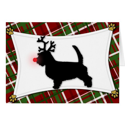 PBGV Reindeer Christmas Card