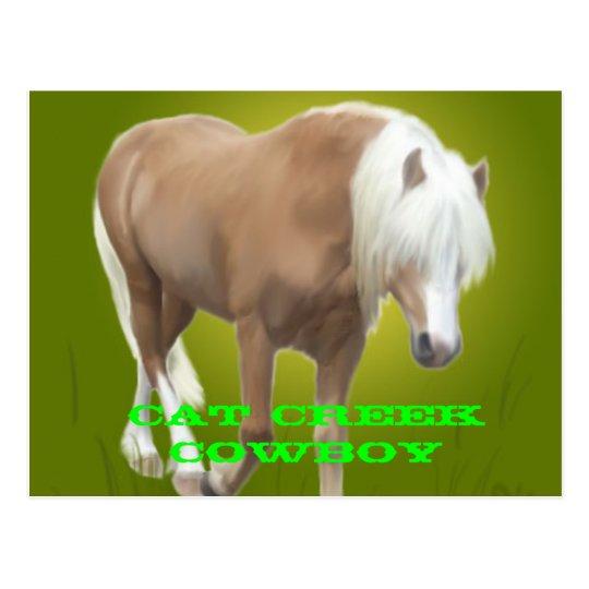 PC del vaquero de la cala del gato Tarjeta Postal