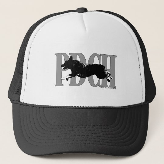 PDCHACD TRUCKER HAT