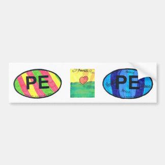 PE - Planet Earth Colors Car Bumper Sticker