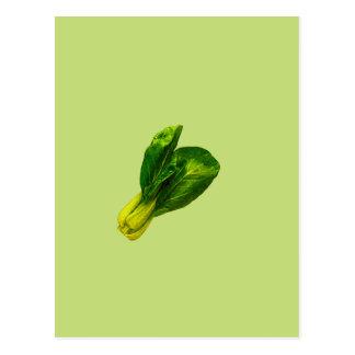 Pea Green Bok Choy Postcard