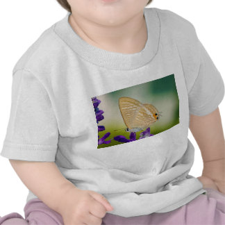 Peablue Lampides Boeticus Moth Butterfly Tee Shirts