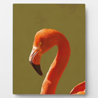 peace and joy flamingo bird pink tropical display plaque