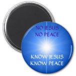 PEACE AND LOVE FRIDGE MAGNET